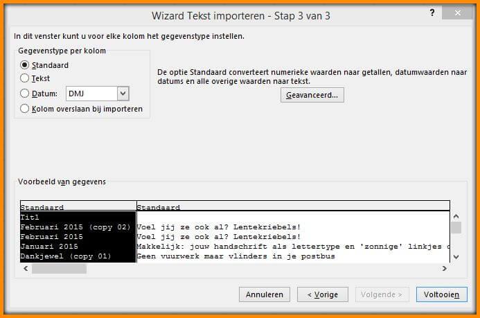 Wizard-tekst-importeren-stap-3